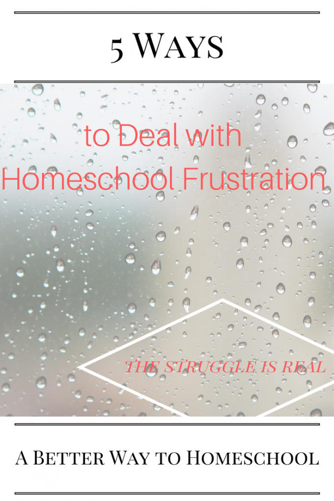 Stategies to help you deal with homeschool frustration. {The struggle is real}