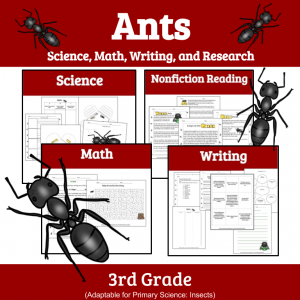 Cover Ants Discovery Unit- Ant Farm Companion