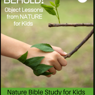 bible object lessons for kids from nature