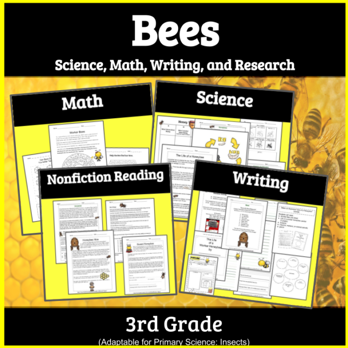 All About Bees Worksheets