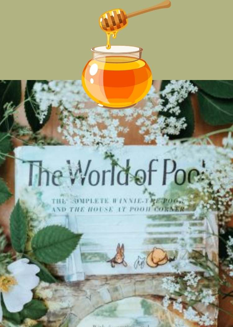 book winnie the pooh