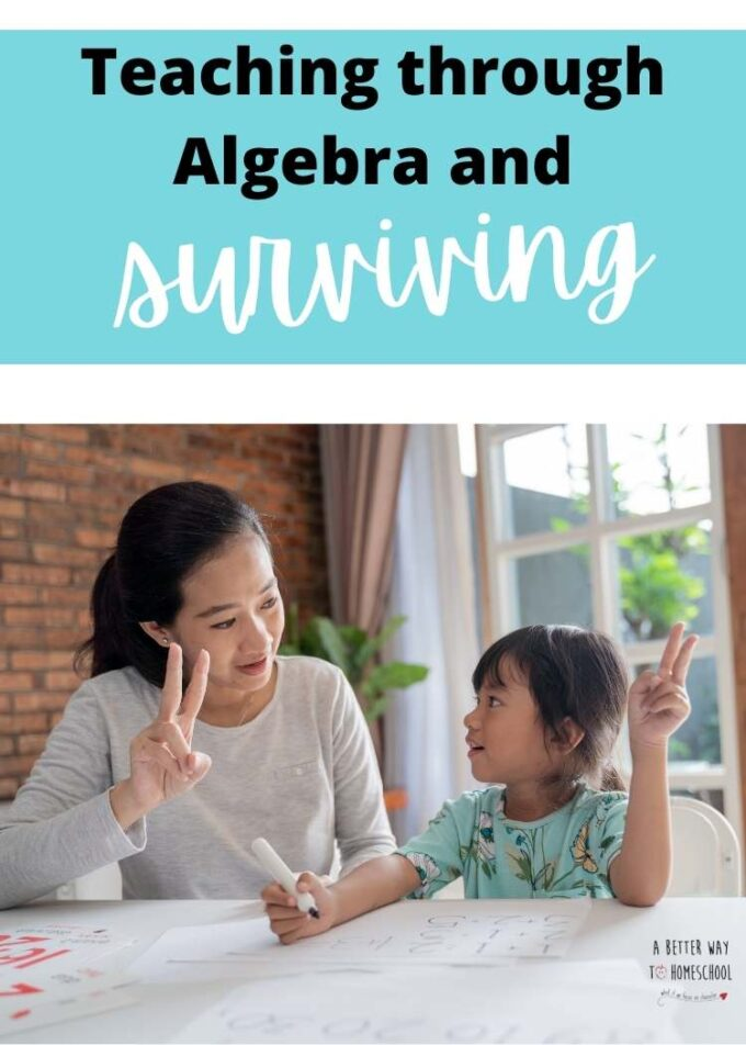 image of mom teaching child math with test teaching through algebra and surviving